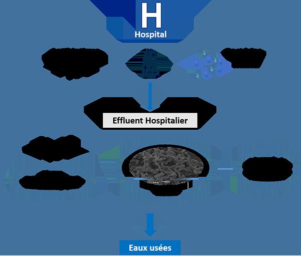 L'hôpital, lieu d'échange entre les malades et l'environnement?